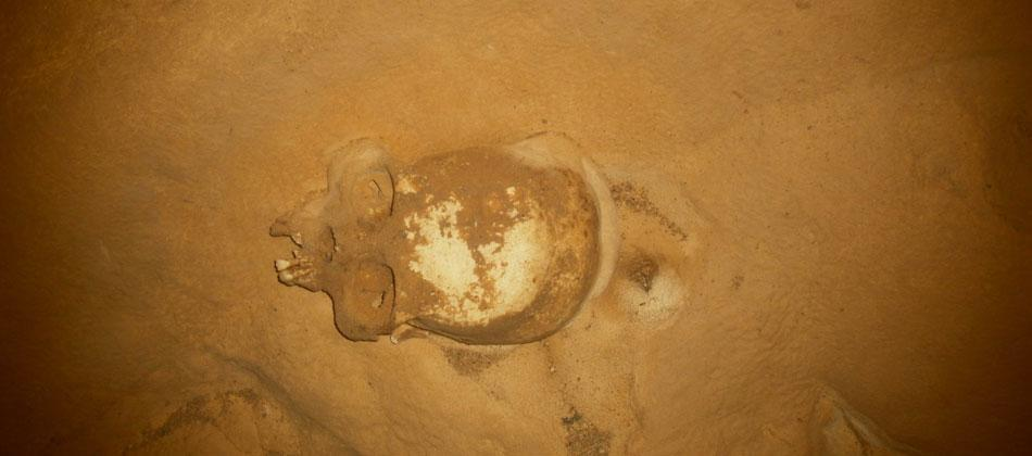 Ancient Maya Skull